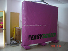 Best sale commercial oxford cloth easy screen new year outdoor inflatable model