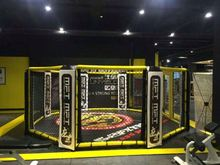 Cheaper Octagon Mma Cage Sale