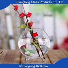 Fashion Design Low Price OEM Accepted Glass Vase With Foot