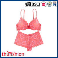 Soft Hand Feel Sexy Ladies Lace Push Up Bra Panty Set