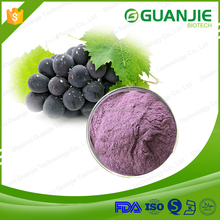 Wholesale Top Quality Grape Juice Powder,dried grape powder