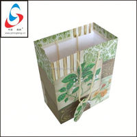 Paper Bag with handle shopping bag foil paper bag for chicken