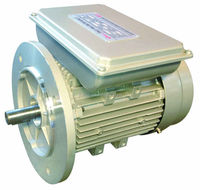 YL series aluminum housing three-phase asynchronous electromagnetic brake motor