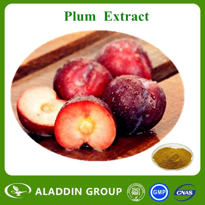 Plum Extract Promote the secretion of digestive enzymes