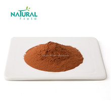 ISO Certified Natural Grape Seed Extract Powder