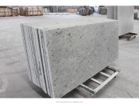 white amber granite snow white granite dallas white granite