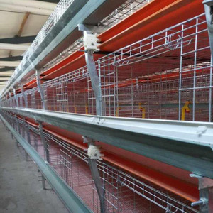 Chicken Cage Layer with Good Quality and Cheap Cost