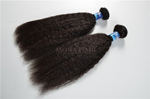 Gold supply 8a grade virgin hair wholesale distributors bundles kinky straight brazilian hair