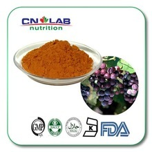 Pure Grape Seed Extract Powder/Oil Super anti-oxidation