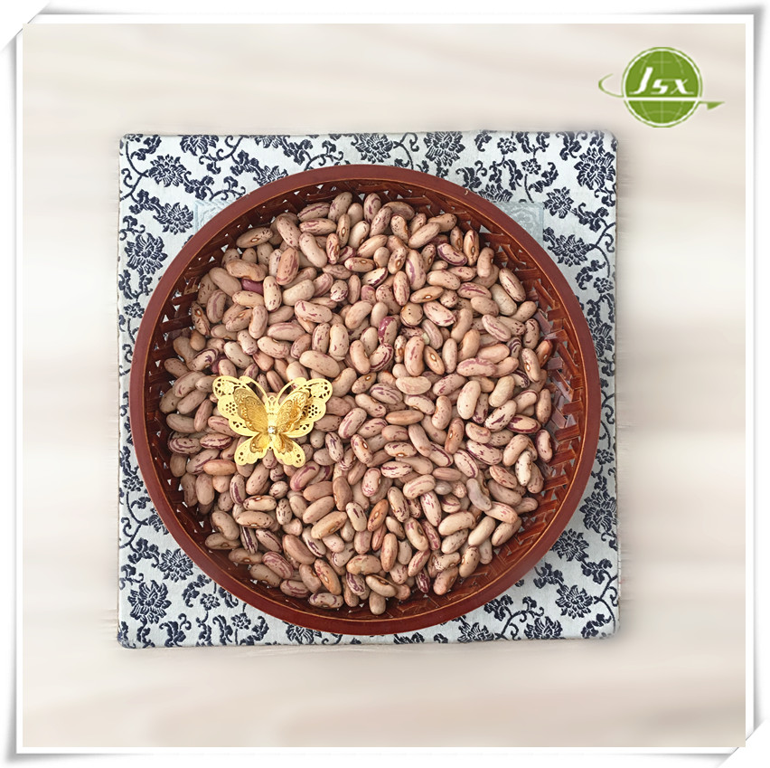 JSX High Quality Dry Mexican Pinto Beans Wholesale