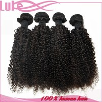 Young Girl Human Hair 100% Virgin Mongolian Kinky Curly Hair