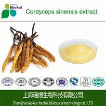 Cordyceps Sinensis Extract CS-4 Capsules oem contract manufacturer