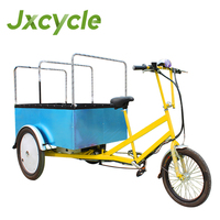 500w PowerfulShopping Carrier Electric Cargo Tricycle