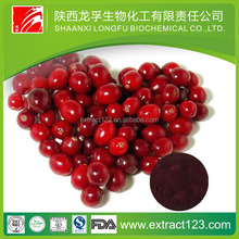 Alibaba China Supply 100% pure natural 10:1 20:1 cranberry extract/free sample cranberry juice extract/bilberry fruit powder