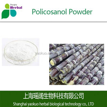 Saccharum Extract/Sugarcane Wax Extract/Policosanol Powder