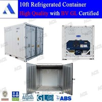 10ft 20ft 40ft reefer containers for sale