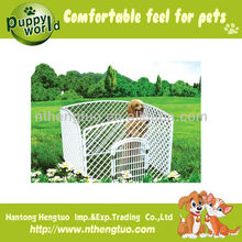 Comfortable Outdoor Dog Fence