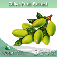 Hot Selling 6%~60% Oleuropein Olive Fruit Extract, Olive Fruit P.E., Olive Fruit Powder