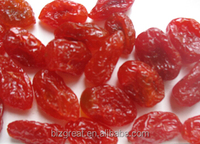 Preserved Fruits Dried Sweet Cherry Tomato for Sales