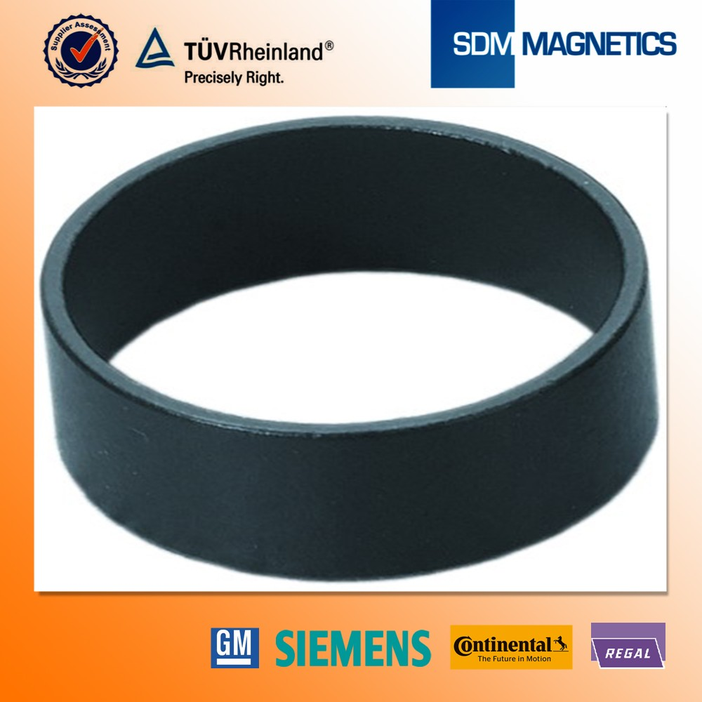 14 Years Experience ISO/TS 16949 Certificated Ferrite Dishwaser Magnet
