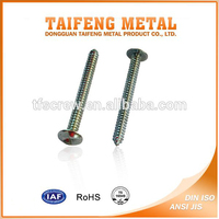 Heat Treatment Zinc Plated Anti Theft Security Screws
