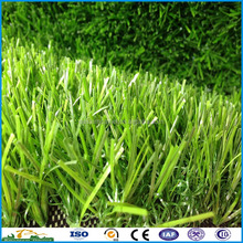 Dog love soft Eco-friendly factory price garden grass for pet
