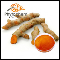 95% powder curcumin price for retail