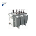 33kv/6.3kv 3000kva Oil-Immersed Power Distribution Transformer With High Quality