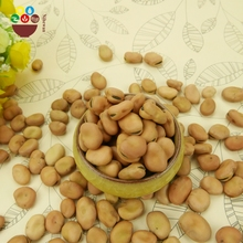 China manufacturer wholesale dry fava beans dry yellow broad beans