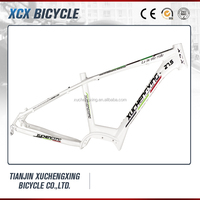 Alloy aluminium e-bike frame with mid motor drive with nice paint
