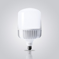 CE RoHS Approval Environment Friendly 60W