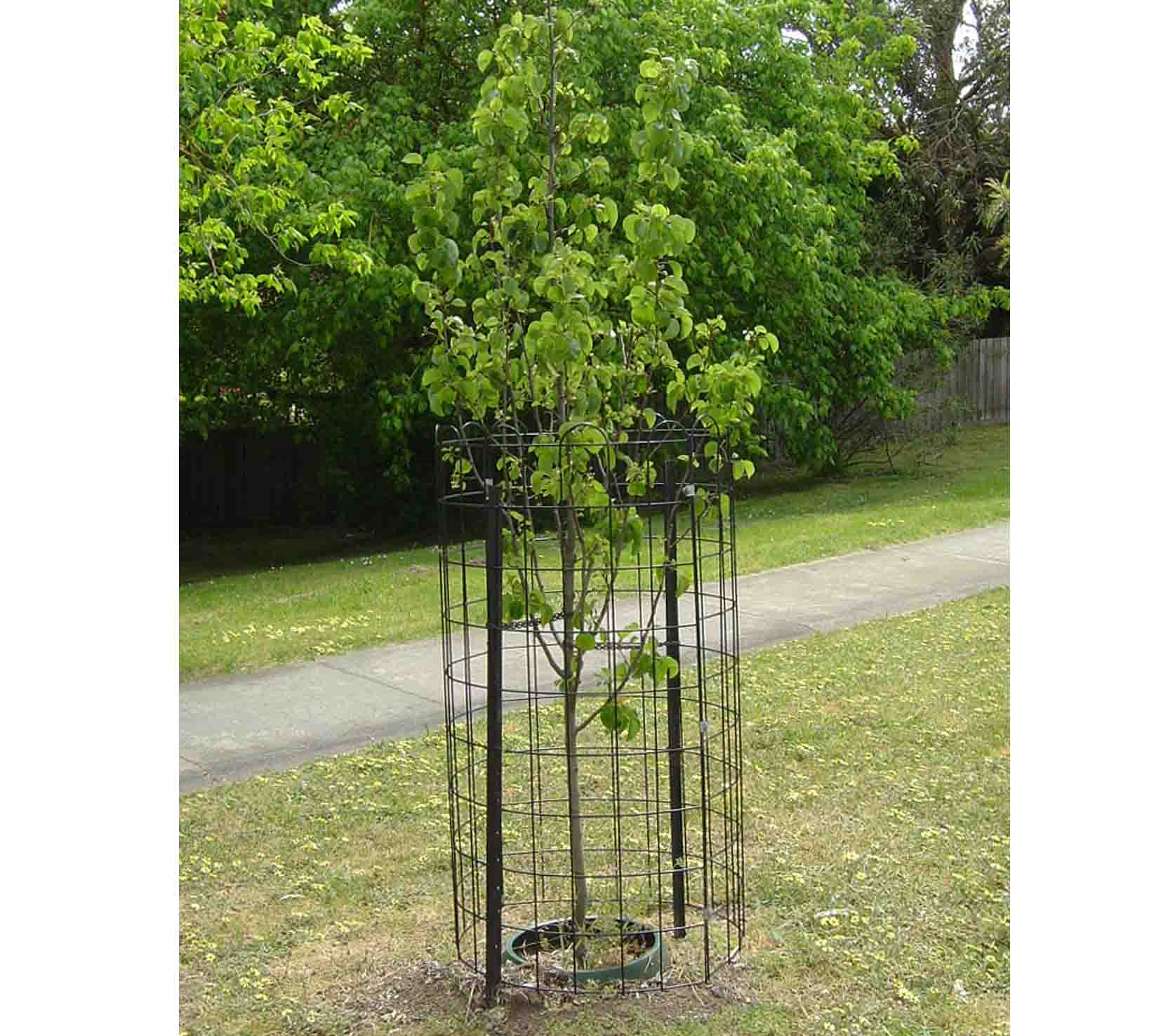 PVC coated tree protection fence