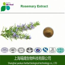 Rosemary Herbs Extract for Hair Growth/Rosemary Oleoresin Extract with Rosemary Acid 5%~90%