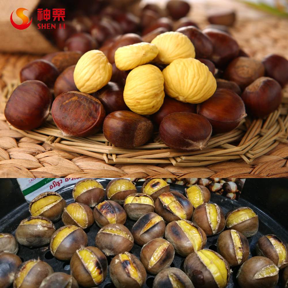 chinese sweet organic raw fresh chestnut for sale