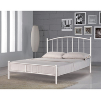 Modern design top popular beautiful metal bedroom furniture single bed