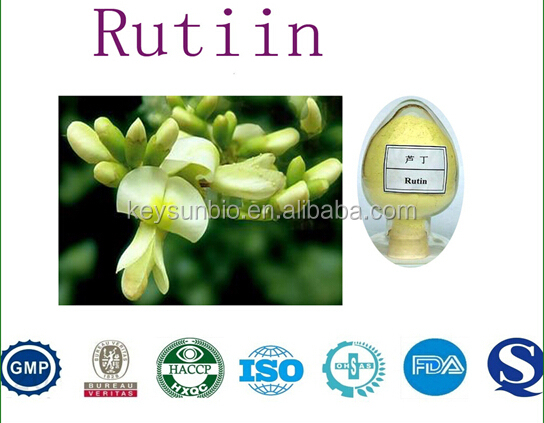 BV certificated manufacturer supply Best price high quality Rutin plant powder extract