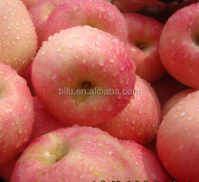 2017 best fresh fuji apple fruit cheap wholesale price