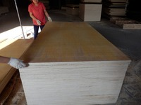 plywood wall sheet/russian birch plywood varnish finish birch plywood artificial white birch trees/