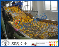 Fruit cleaning machine
