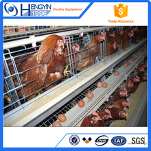 use for animal bird cage poultry cage professional producer chicken cage