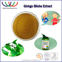 Factory price chinese herbal medicine anti-aging ginkgo biloba extract 24/6 natural ginkgo biloba leaf extract