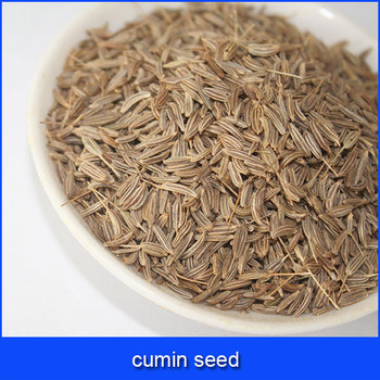 cumin seeds best price