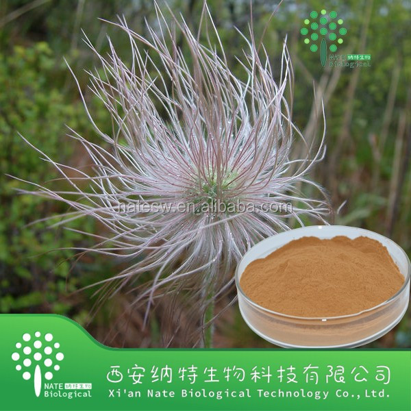 GMP factory high quality Pulsatilla Root Extract powder/Anemone chinensis extract/Anemone chinensis powder
