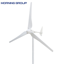 L Series 1kw 2kw Wind Generator Turbine 48V 96V Windmill with Glass Fiber Reinforced Plastics Blades