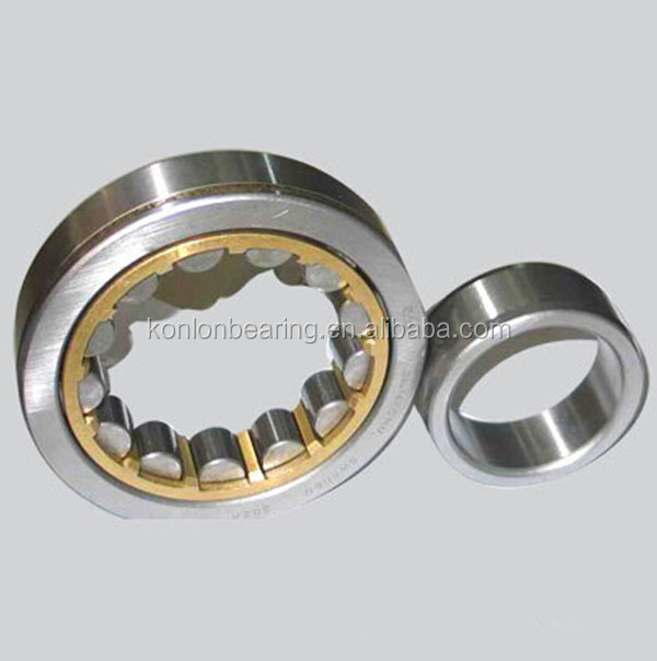 cylindrical roller bearing nup 1009