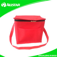 High quality disposable cooler lunch bag for outside