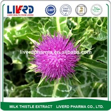 GMP Certified 100% Natural Milk Thistle for Liver Herbal Remedy