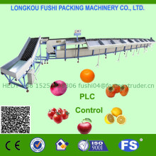CHEAP & HIGH EFFICIENCY ONION SORTING MACHINE
