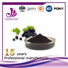Black Currant extract herbal extract