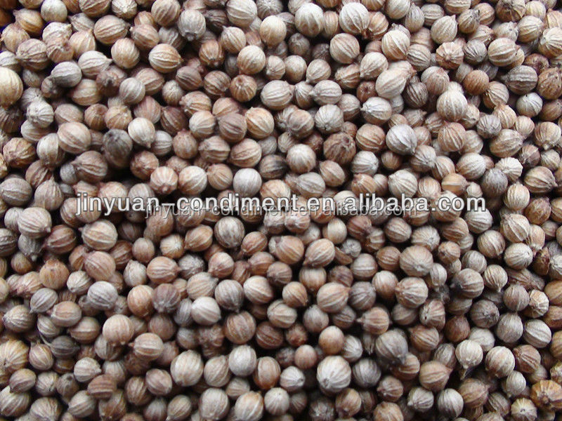 Top Quality Black Coriander Seeds Price